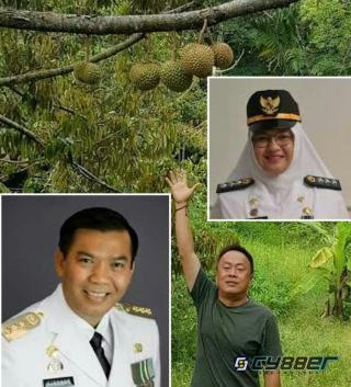 Mantan Camat Rumbai Barat Bungkam Terkait Kepemilikan Sah Ratusan Hektar Lahan Durian Milik Sujono